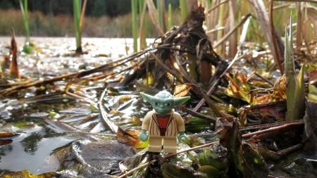 LEGO Star Wars : Yoda. By Chris Christian https://www.flickr.com/photos/wiredforsound23/ CC-licensed.